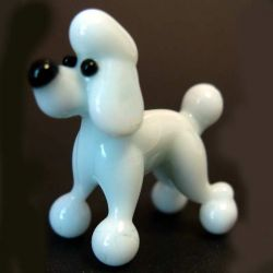 Glass Poodle  Dog, fig. 1